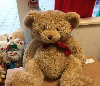 Teddy Bear available in our toy section